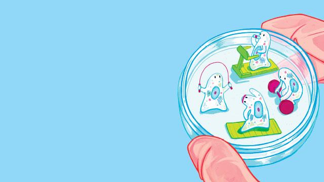Riabilitazione rigenerativa: il futuro già presente